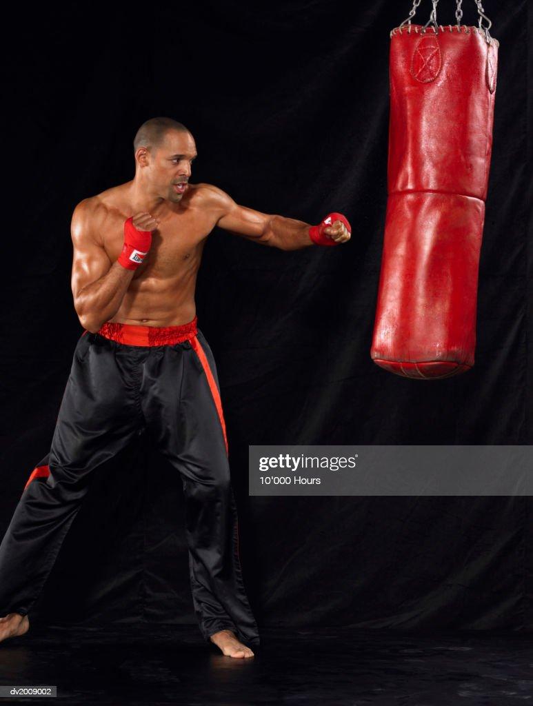 Male Boxer Punching a Punching Bag : Stock Photo