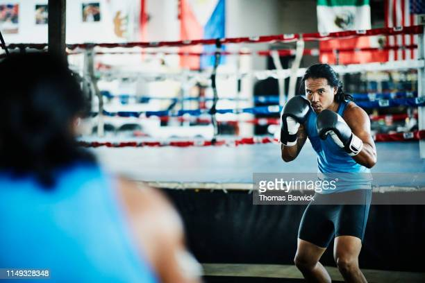 male boxer shadow boxing in mirror in boxing gym - boxing shorts stock pictures, royalty-free photos & images