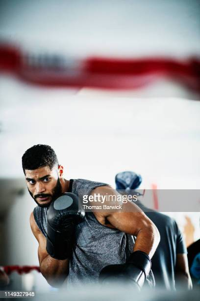 male boxer shadow boxing in ring in gym - boxing stock pictures, royalty-free photos & images