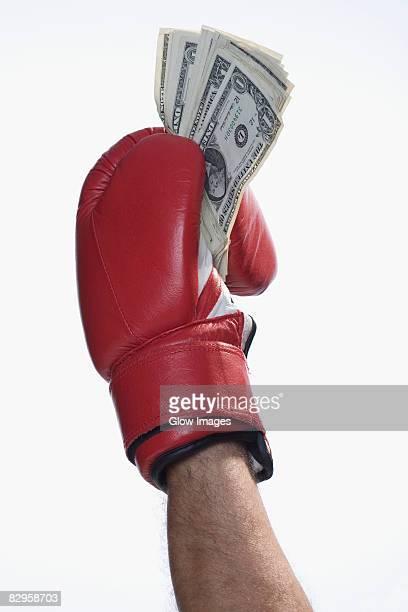 Male boxer's hand holding US dollar bills