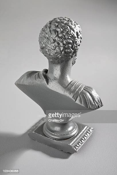 A male bust, rear view