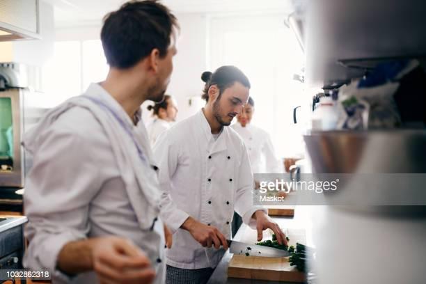 male chef chopping vegetable in commercial kitchen - cortando preparando comida - fotografias e filmes do acervo