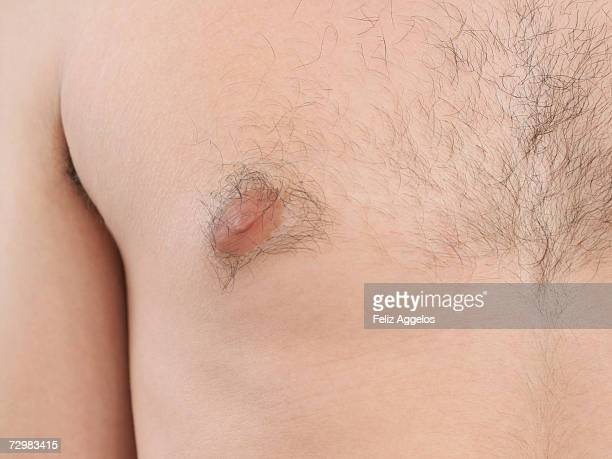 male chest, close-up, mid section - busen nahaufnahme stock-fotos und bilder