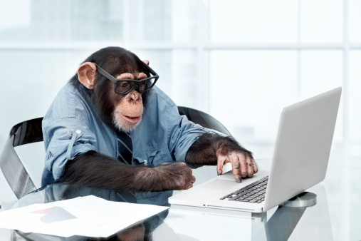 Male chimpanzee in business clothes 143921954