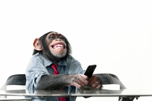 Male chimpanzee in business clothes 186849685