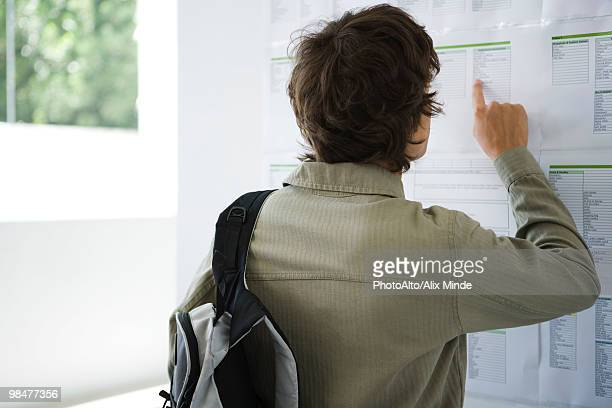 Male college student checking results posted on bulletin board, rear view