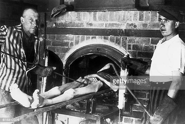 A male corpse is about to be put into a brick oven at Dachau a concentration camp near Munich Two men working at the oven hold metal pokers and wear...