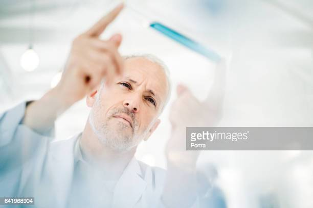 Male doctor analyzing sample in test tube at lab