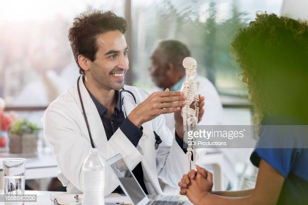 male doctor uses human skeletal model in coworker discussion - osteoporosis stock pictures, royalty-free photos & images
