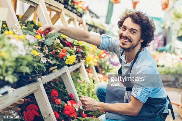 Male florist choosing flowers