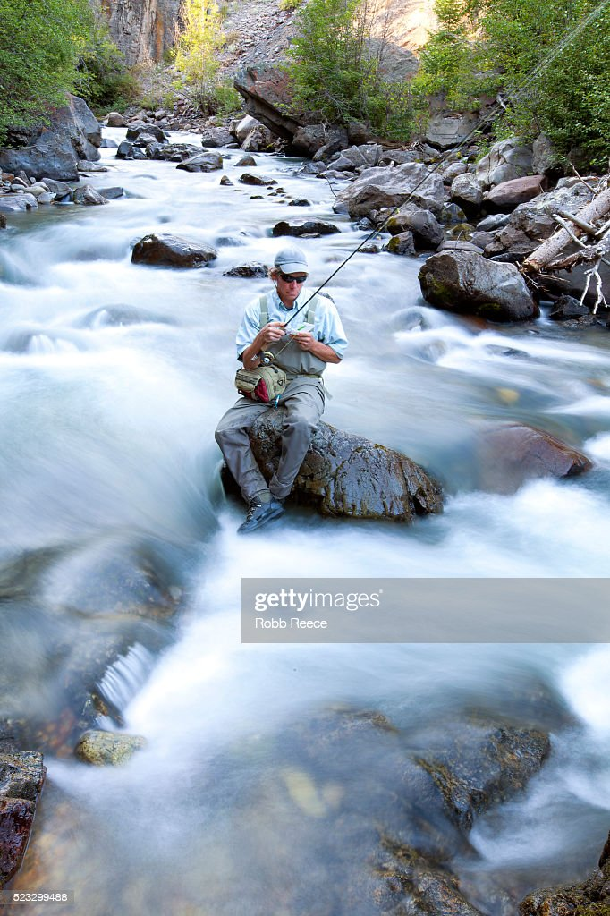A male fly fisherman chooses a fly while sitting on a rock in a Colorado stream : Stock Photo
