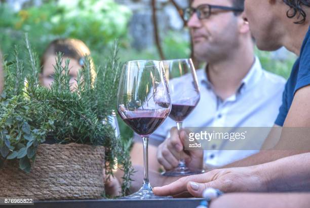 Male Friends Drinking Red Wine in the Back Yard