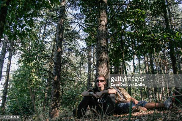 Male Friends Sitting By Tree At Forest