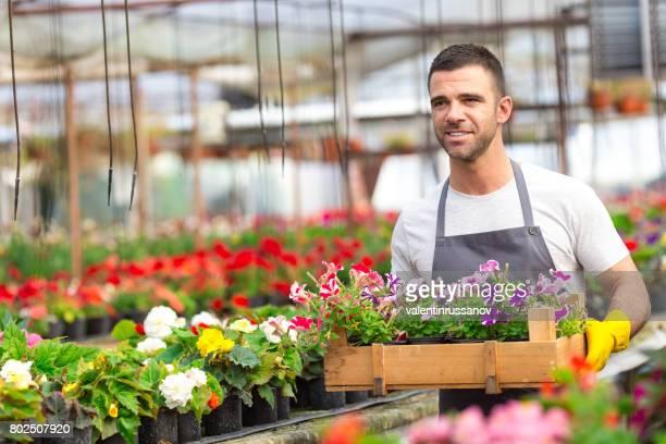 花箱を運ぶ男性の園芸用品センター ワーカー - 造園師 ストックフォトと画像