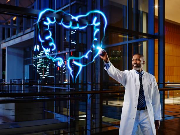 Male gastroenterologist analyzing large intestine in laboratory at hospital