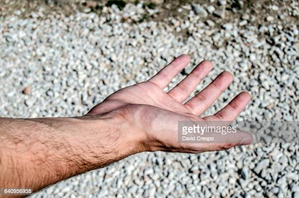 Male hand and arm