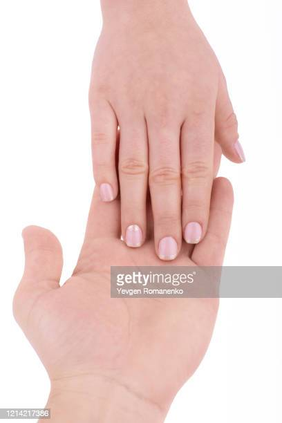 male hand holds a female hand isolated on a white background - menschlicher finger stock-fotos und bilder