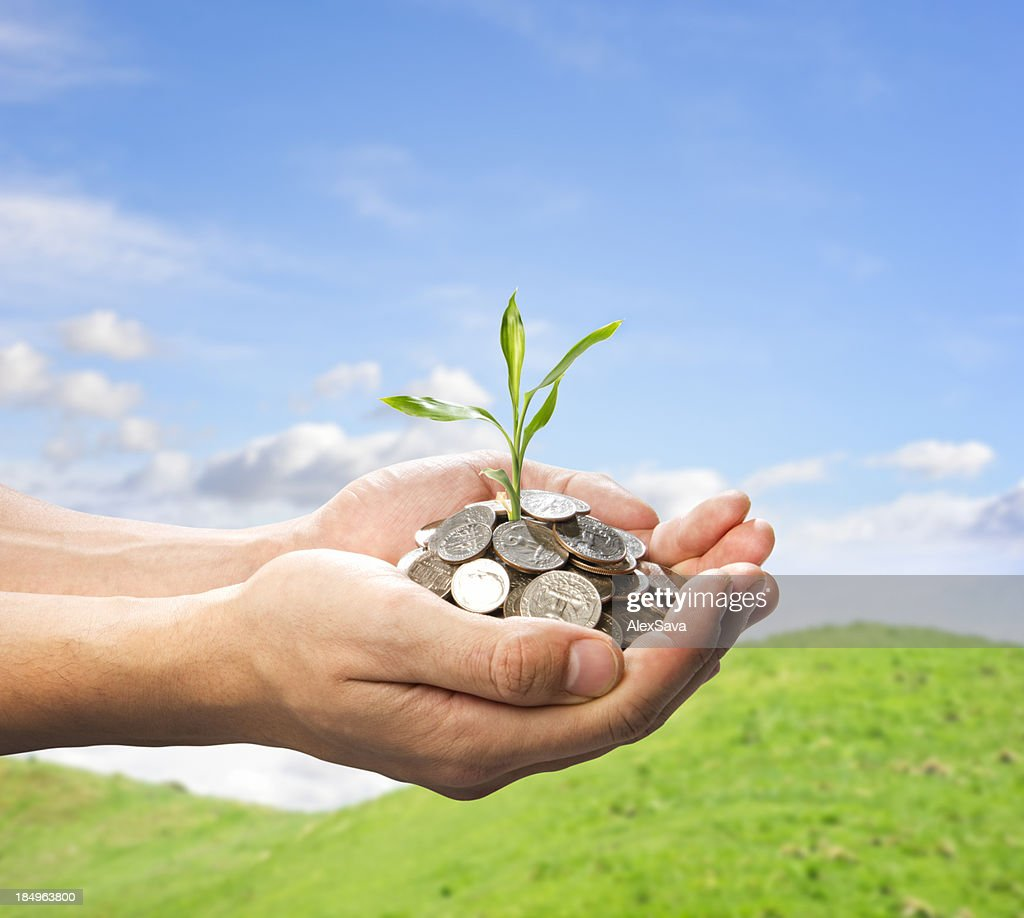 male hands holding coins and small plant : Stock Photo