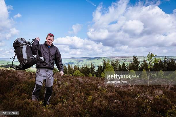 Male hiker lifting rucksack onto shoulder on heather moors, Pateley Bridge, Nidderdale, Yorkshire Dales