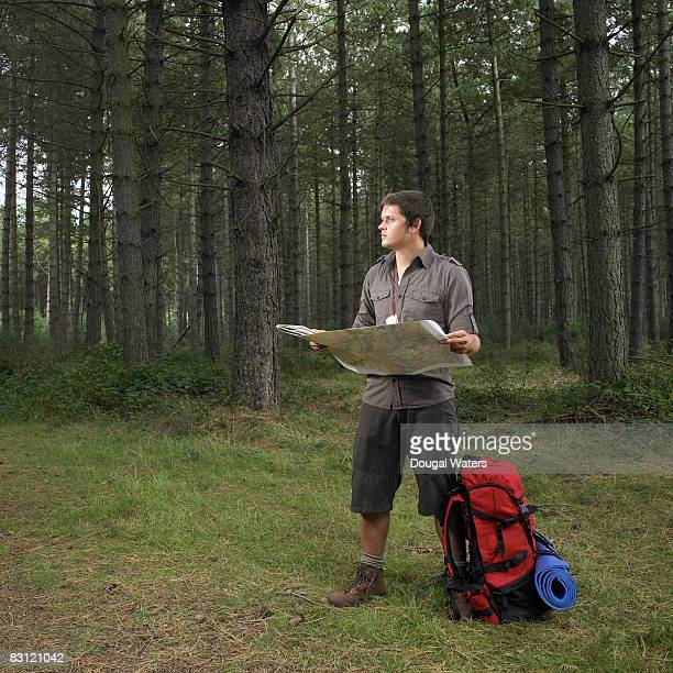 Male hiker looking at map in forest.
