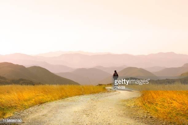 randonneur masculin sur le sentier - voie piétonne photos et images de collection