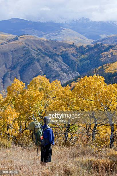 A male hiker overlooks fall colors in Colorado.