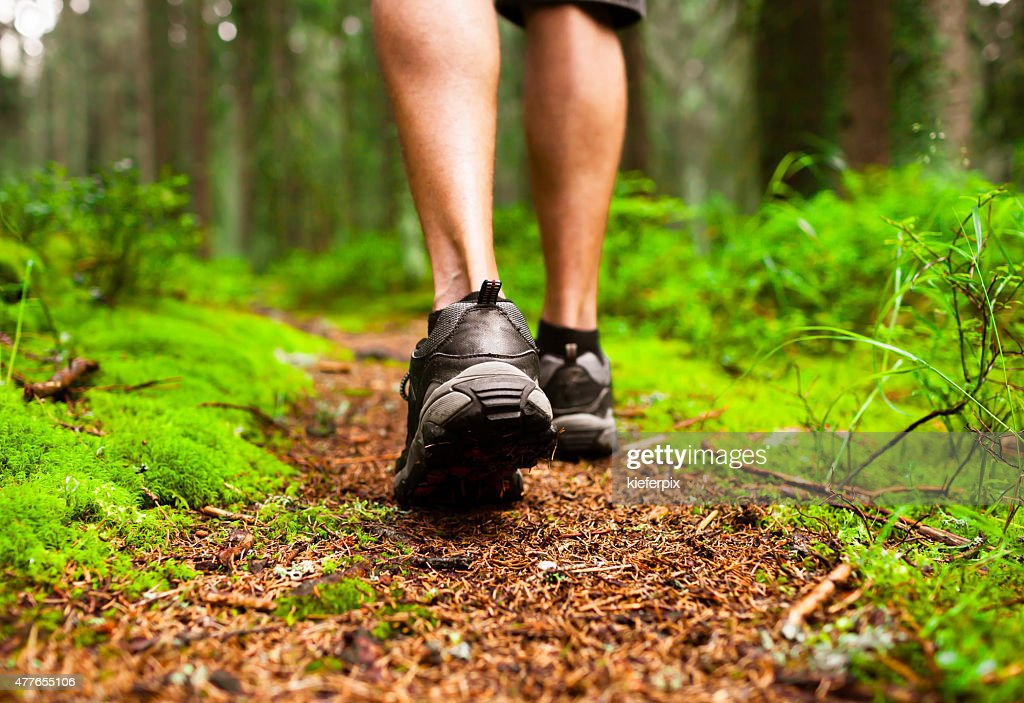 Male hiker : Stock Photo