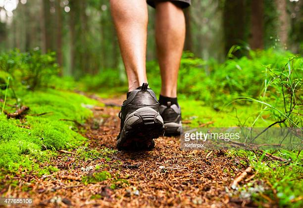 Closeup of male hiker walking through the forest.