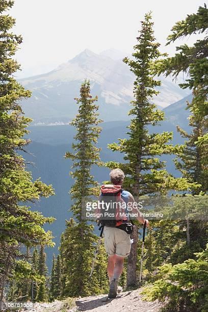 a male hiker walking down a trail at nahahi ridge - aktiver lebensstil stock-fotos und bilder