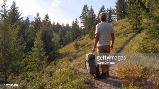male hiker walks along forested footpath - forked road stock pictures, royalty-free photos & images