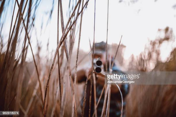 Male Hunter Hidden in the Swamp and Preparing for Shooting