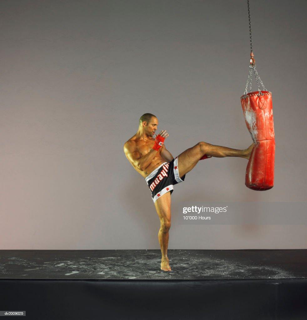 Male Kick Boxer Kicking a Punch Bag : Stock Photo