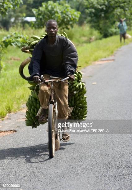 Male market trader cycling along rural road with bananas, Masango, Cibitoke, Burundi, Africa