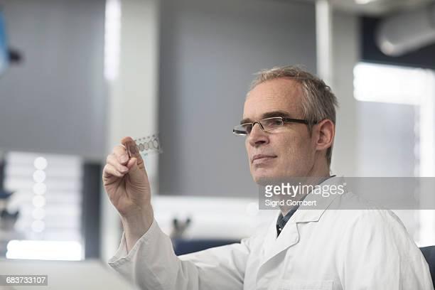 male meteorologist examining microscope slide in weather station laboratory - sigrid gombert fotografías e imágenes de stock