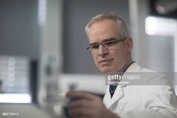 male meteorologist examining microscope slide in weather station laboratory - sigrid gombert stock pictures, royalty-free photos & images