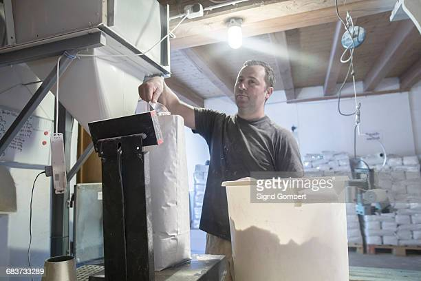 male miller filling sacks with milled flour in wheat mill - sigrid gombert stock-fotos und bilder