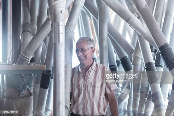 male miller monitoring milling machine and flour sack at wheat mill - sigrid gombert imagens e fotografias de stock