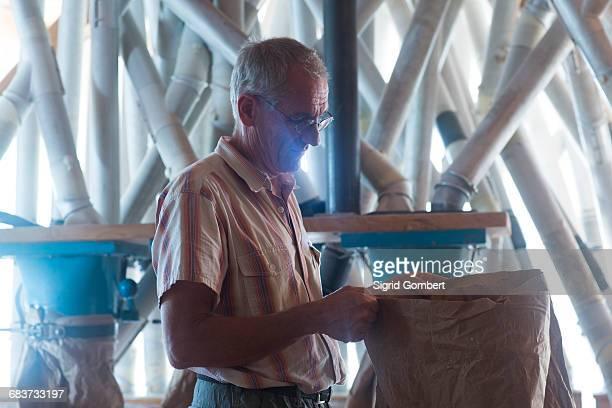 male miller monitoring sack of flour at wheat mill - sigrid gombert stock-fotos und bilder