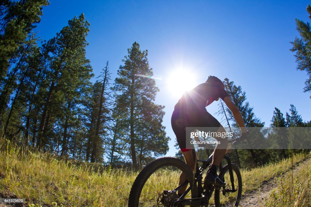 A male mountain bike racer competes in a cross-country event on a sunny day in British Columbia, Canada. : Stock Photo