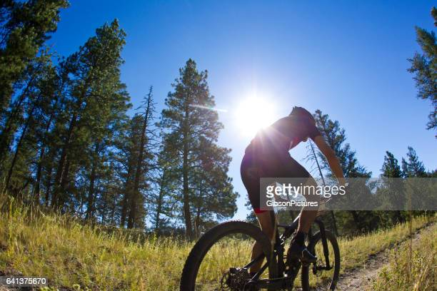 a male mountain bike racer competes in a cross-country event on a sunny day in british columbia, canada. - cross country cycling stock photos and pictures