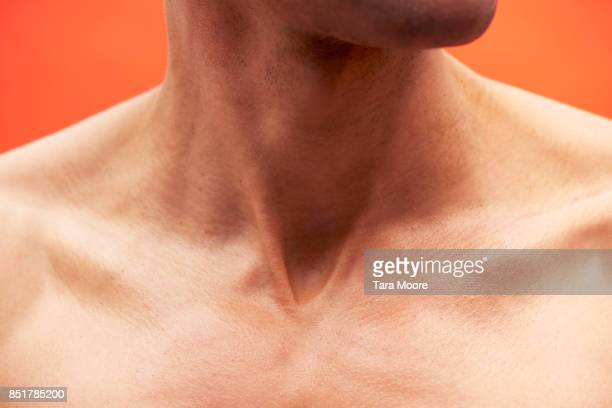 male neck and shoulders