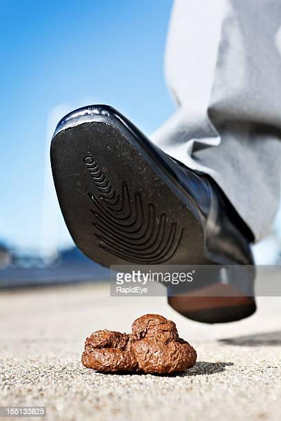 maschio pedonale scarpa intelligente di mettere piede in cane feci - cacca foto e immagini stock