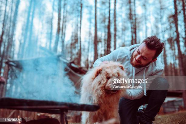male playing with cute puppy while making barbecue - chow dog stock pictures, royalty-free photos & images
