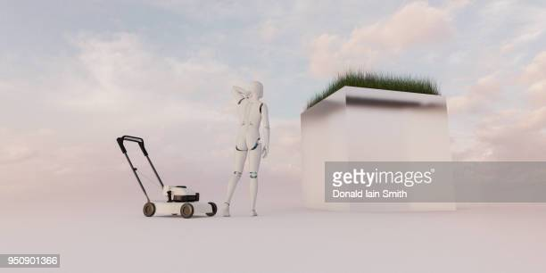 Male robot figures out how to mow lawn on raised plinth