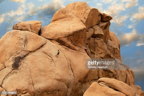 male rock climber in joshua tree national park - timothy hearsum fotografías e imágenes de stock