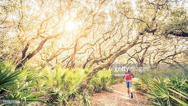 Male runner on training run through woods at sunset