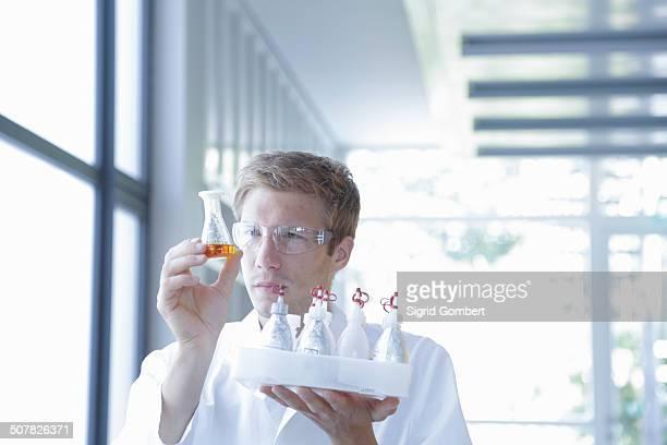 male scientist analyzing erlenmeyer flask in lab - sigrid gombert 個照片及圖片檔