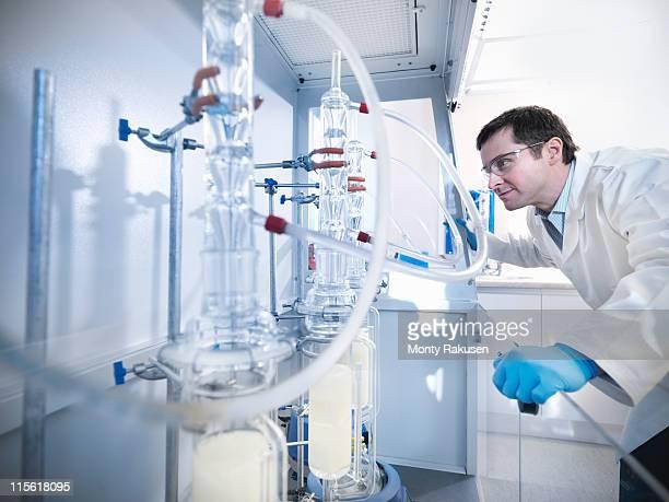 male scientist in laboratory, inspecting still experiment in fume cupboard - laborschlauch stock-fotos und bilder