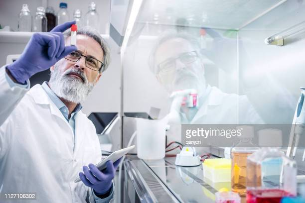 male scientist working in the digestorium - scientist stock pictures, royalty-free photos & images