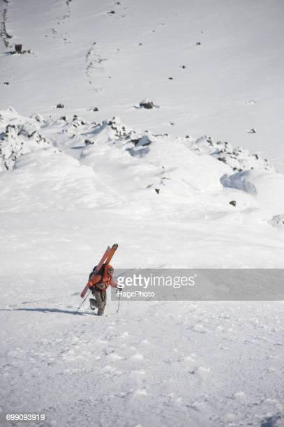 male skier ascends the northeast flanks of mt augustine - golfo do alasca imagens e fotografias de stock